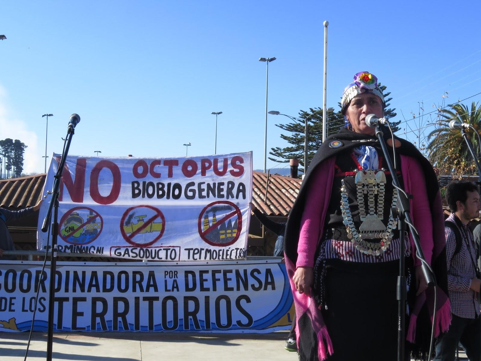 Ecología política. Conversación con Fafi Vega del Observatorio Latinoamericano de Conflictos Ambientales