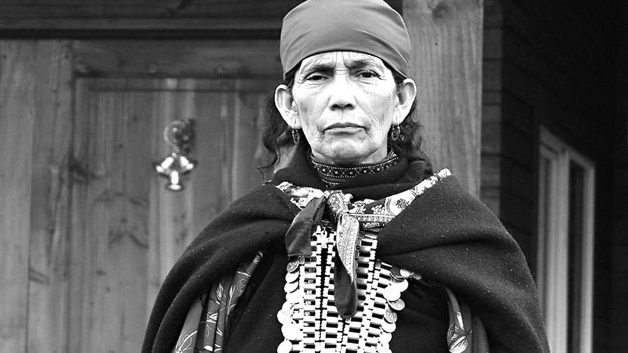No más violencia colonial/patriarcal: Libertad a la machi Francisca Linconao